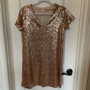 Altar'd State Rose Gold Sequin Dress